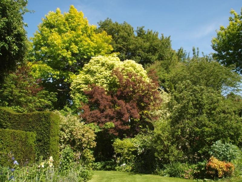 Jardins d 39 ornement - Petit outillage de jardin wolf la rochelle ...