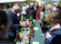 DEMONSTRATION BOUTURAGE 2012 b