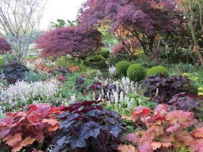 Conférence : Un jardin beau et coloré toute l\'année