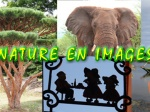 Spectacle : nature en images
