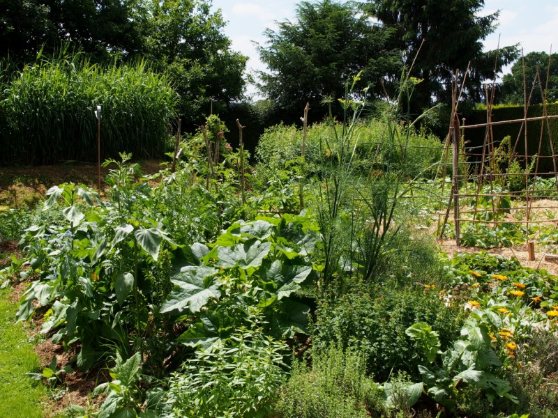 D monstration echanges autour de la cr ation d 39 un jardin for Creation jardin potager
